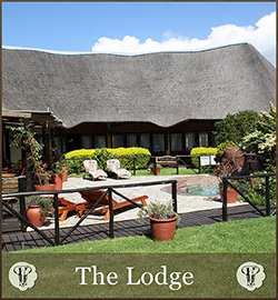 Gallery Lodge